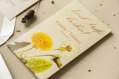 Podziękowania ślubne, nasionka na gości weselnych. Opakowanie z motywem dmuchawca i mleczów