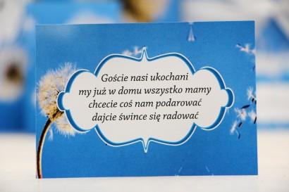 Bilecik prezenty ślubne wesele - Felicja nr 11 - Dmuchawiec na tle błękitnego nieba - zaproszenia na ślub