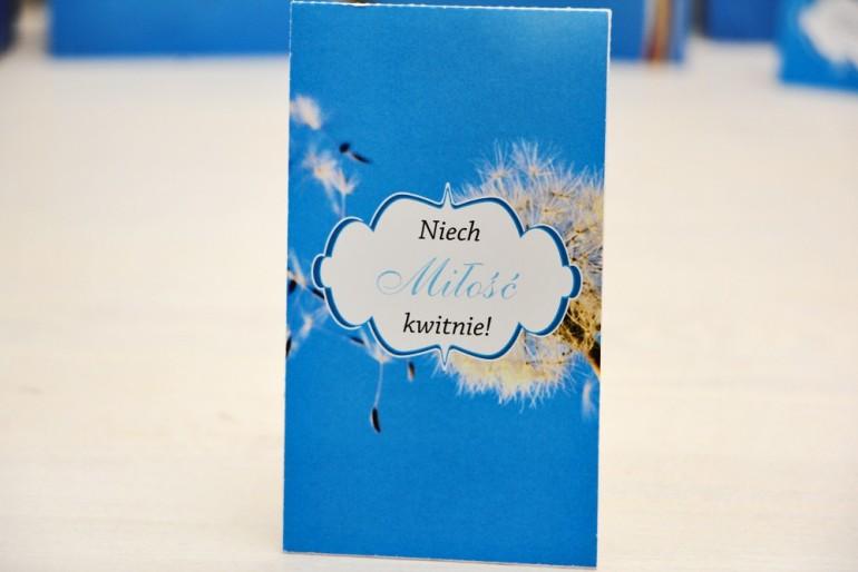 Podziękowania dla Gości weselnych - nasiona Niezapominajki - Felicja nr 11 - Dmuchawiec - kwiatowe dodatki ślubne