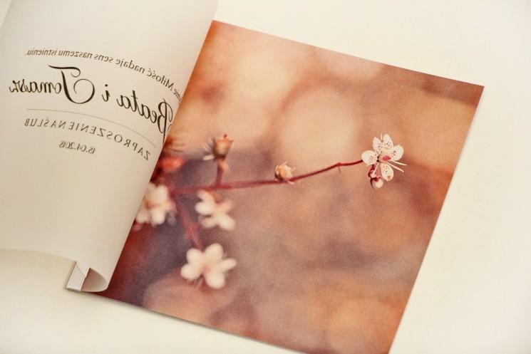Zaproszenie ślubne, zaproszenia na ślub eleganckie z kalką - Elegant nr 16 - Kwiaty wiśni