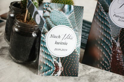 Podziękowania ślubne, nasionka na gości weselnych w stylu botanicznym. Grafika z kaktusem